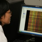 Scientist viewing computer screen showing DNA barcodes.